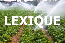 Lexique de l'irrigation professionelle